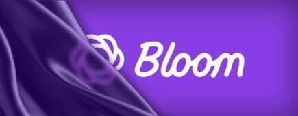 Elegant Themes Bloom Targeting for Logged In / Logged Out Users Only
